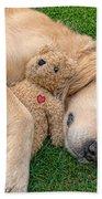 Golden Retriever Dog Teddy Bear Love Beach Towel