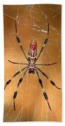 Golden Silk Spider 3 Beach Sheet
