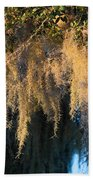 Golden Spanish Moss Beach Towel