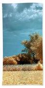 Golden Summerscape Beach Towel by Helga Novelli