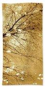 Golden Tones Beach Sheet