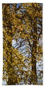 Golden Tree 2 Beach Towel