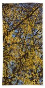 Golden Tree 3 Beach Towel