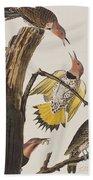 Golden-winged Woodpecker Beach Towel