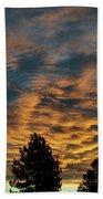 Golden Winter Morning Beach Towel by Jason Coward