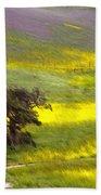 Goldenrod Oak Santa Ynez California 2 Beach Towel
