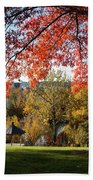 Gonzaga With Autumn Tree Canopy Beach Towel by Carol Groenen