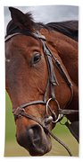Good Morning - Racehorse On The Gallops Beach Towel