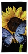 Gorgeous Blue Butterfly Beach Towel