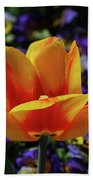 Gorgeous Flowering Yellow And Red Blooming Tulip Beach Towel