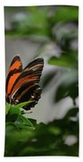 Gorgeous View Of An Oak Tiger Butterfly In The Spring Beach Towel