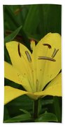 Gorgeous Yellow Lily Growing In Nature Up Close Beach Sheet