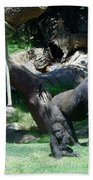 Gorillas Mary Joe Baby And Emonty Mother 7 Beach Towel