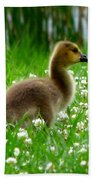 Gosling 1 Beach Towel