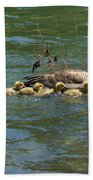 Goslings In A Row Beach Towel