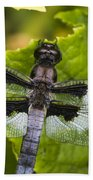 Gossamer Wings Beach Towel