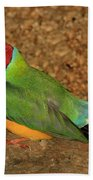 Gouldian Finch Beach Towel