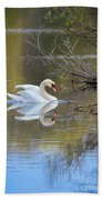 Graceful Swan Beach Towel