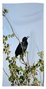 Grackle Cackle Beach Towel
