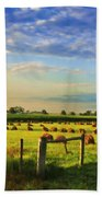 Grain In The Field Beach Towel