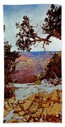 Grand Canyon National Park - Winter On South Rim Beach Towel