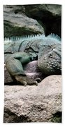Grand Cayman Blue Iguana Beach Towel