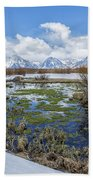 Grand Tetons From Willow Flats In Early April Beach Towel