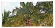 Grand Turk Palms On The Beach Beach Towel