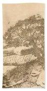 Grape Arbor On Brown Beach Towel