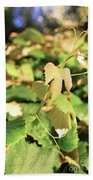 Grape Vine 3 Beach Towel