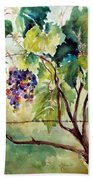 Grape Vines At Otter Creek Beach Towel