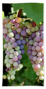 Grapes In Color  Beach Towel