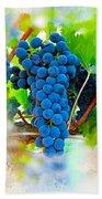 Grapes Of The Vine Beach Towel