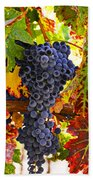 Grapes On Vine In Vineyards Beach Towel