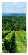 Grapevines On Old Mission Peninsula - Traverse City Michigan Beach Towel
