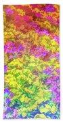 Graphic Rainbow Colorful Garden Beach Towel