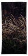 Grass At Sunset Beach Towel