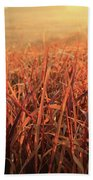 Grass Dyed In The Morning Glow Beach Towel