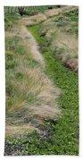 Grass Path Beach Towel