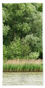 Grasses And Trees Beach Towel