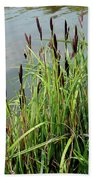 Grasses With Seed Heads Beach Towel