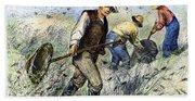 Grasshopper Plague, 1888 Beach Towel