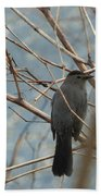 Gray Catbird Beach Towel