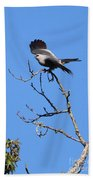 Gray Hawk Retreat Beach Towel
