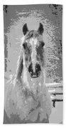 Gray Horse Beach Towel