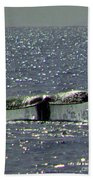 Gray Whale Beach Towel