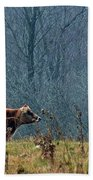 Grazing In Winter Beach Towel