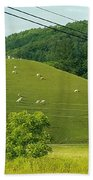 Grazing On The Mountain Side Beach Towel