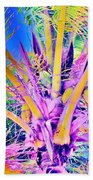Great Abaco Palm Beach Towel