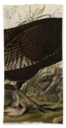 Great American Hen And Young Beach Towel by John James Audubon